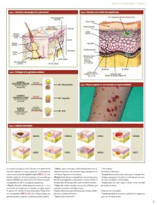 dermatologia-mir